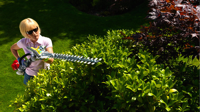 Honda Versatool con attrezzo tagliasiepi, utilizzato da un modello, luogo di utilizzo: giardino.